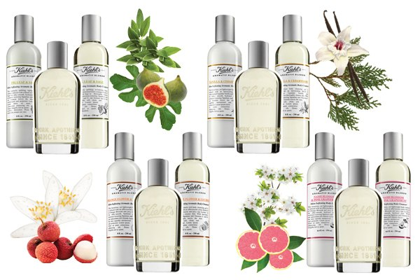 cn image.size .KiehlsAromaticBlends Kiehls unveils fragrance collection